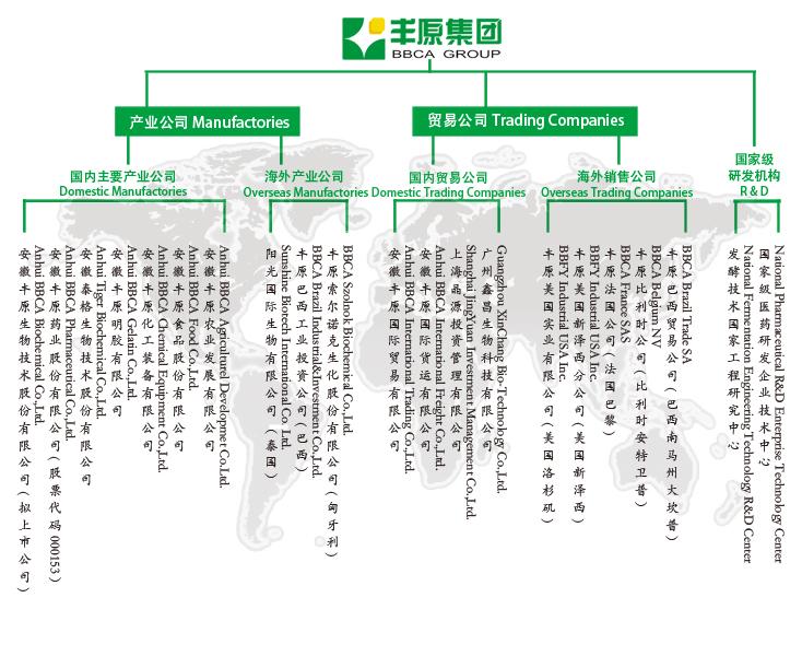集团组织机构-含泰国